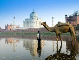 India y su magia oriental
